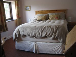 Front room: bed and window